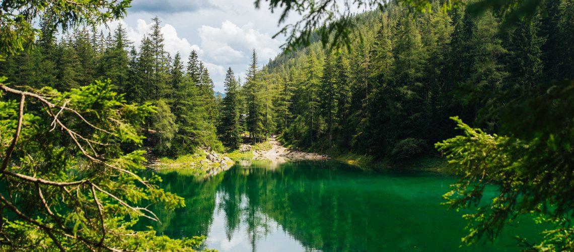 grüner see wasserstand september